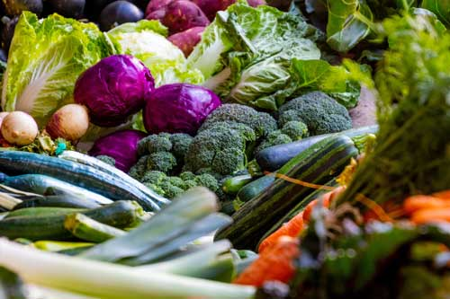 The Practical Guide to Raw Veganism 1